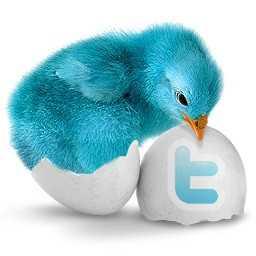 Twitterブランディングとフォロワーを増やす方法
