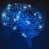 ほんとうに頭がよくなる速読脳のつくり方とは??